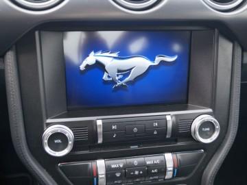 Ford Mustang Fastback GT 5.0 V8 450 KM - Narowisty niczym Mustang...