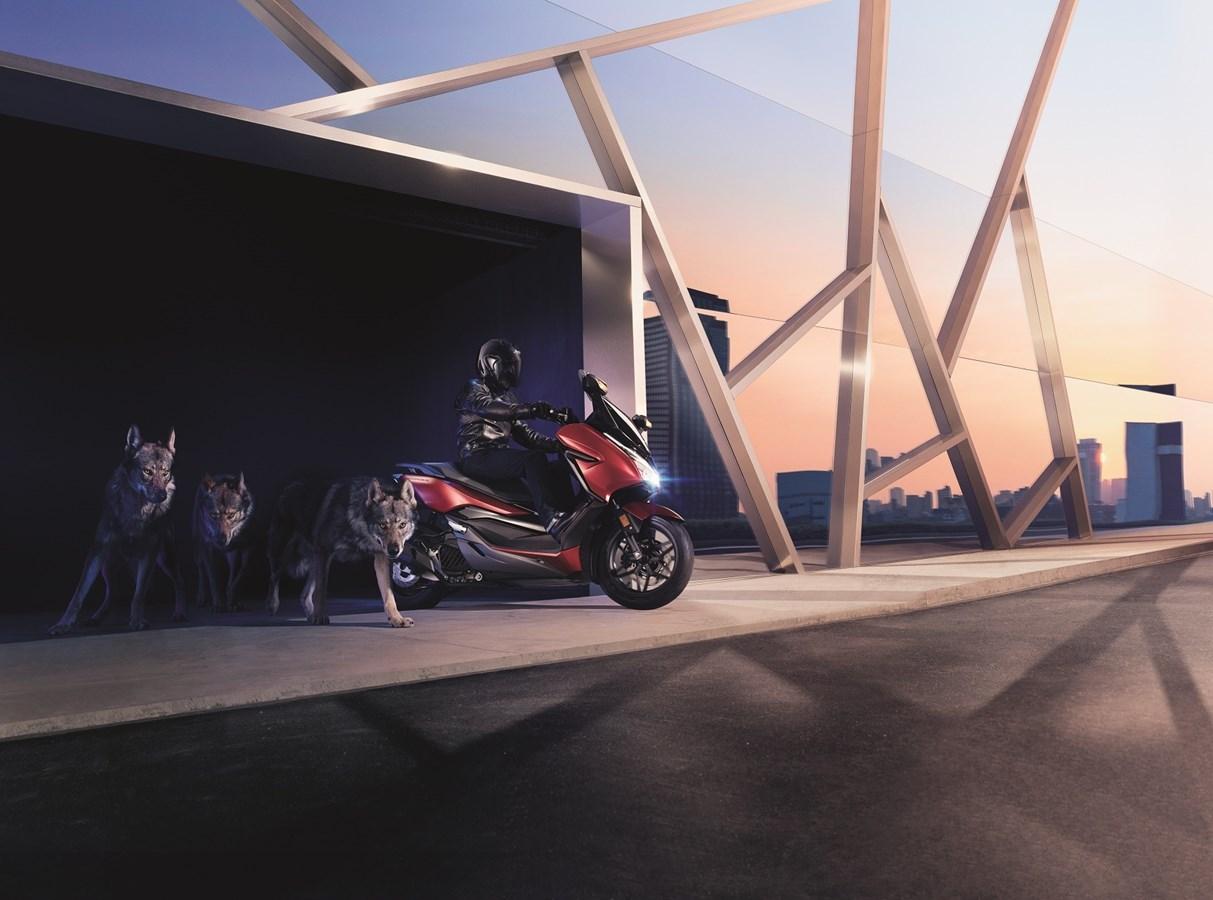 1000 skuterów premium Forza 125 w Polsce